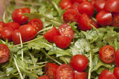 Arugula with halved plum tomatoes — Stock Photo