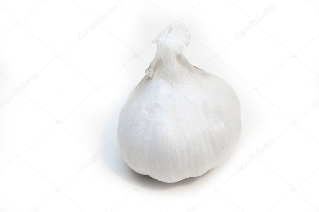 Frischer Knoblauch  Stock Photo #1544729