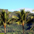 Sleeping Giant, Kauai — Stock Photo #1863999