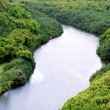 Stock Photo: WailuRiver