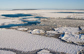 Frozen Baltic Sea — Stock Photo