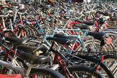 Bicycles — Stock Photo