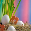 Royalty-Free Stock Photo: Buntes Nest zu Ostern