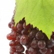 Juicy Red Grapes — Stock Photo #1539678