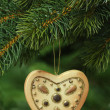 Christmas tree decoration — Foto de stock #1551638