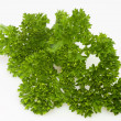 Stock Photo: Parsley twig