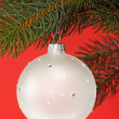 Chrismas ball — Stockfoto #1552061