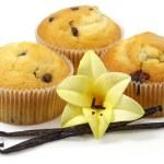 Vanilla muffins — Stock Photo