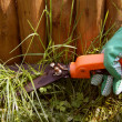 Trimming grass — Stock Photo #1553416