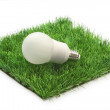 Stock Photo: Energy saving lamp