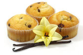 Vanilla muffins — Stock Photo