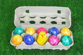 Colorful dyed easter eggs — Stock Photo