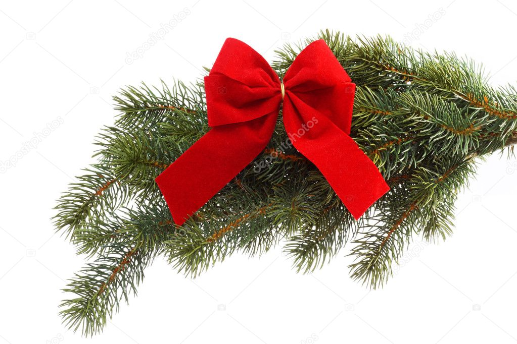 Red gift ribbon on fir tree branch on a white background. Close up. Christmas decoration.  Stock Photo #1553248