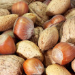 Nuts — Stock Photo #1560066