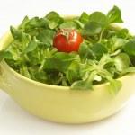 Field salad — Stock Photo #1560448
