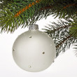Chrismas ball — Stock Photo #1562838