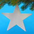 Stock Photo: Chrismas star