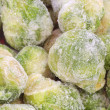Brussels Sprouts_8 — Stock Photo #1564529