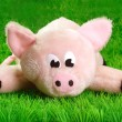 Royalty-Free Stock Photo: Pink Piggy