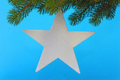 Chrismas star — Stock Photo