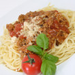 Bolognese — Stock Photo