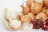 Onion Sorts — Stock Photo
