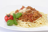 Bolognese 2 — Stock Photo