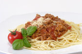 Bolognese 7 — Stock Photo