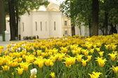 圣三位一体圣 sergius 修道院 — 图库照片