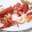 Lobster — Stock Photo #1577265