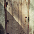 Old wooden door — Stock Photo #1538462