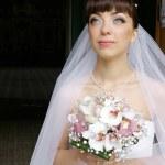 Beautiful bride against dark background — Stock Photo