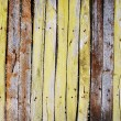 Old picket fence — Stock Photo #1545781