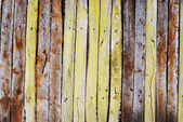 Old picket fence — Stock Photo