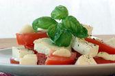 Delicious mozzarella salad — Stock Photo