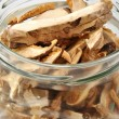 Dried wild   porcini mushroom — Stock Photo