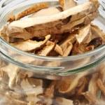 Dried wild porcini mushroom — Stock Photo #1548104
