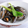 Cooked organic mussel — Stock Photo