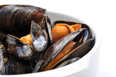 Some fresh and organic mussel — Stock Photo