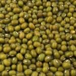 Organic mung beans — Stock Photo #1551075