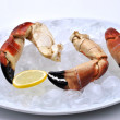 Fresh organic crab claws — Stock Photo
