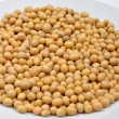 Stock Photo: Organic soybeans