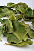 Organic kaffir lime leaves — Stock Photo