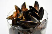 Fresh organic mussel in garlic butter — Stock Photo
