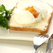 Poached egg on a slice toast — Stock Photo