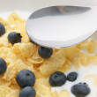 Muesli milk and blueberries — Stock Photo #1592027