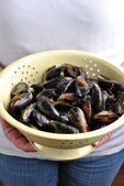 Hold some organic mussel — Stock Photo