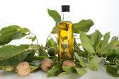 Walnut oil in a bottle — Stock Photo