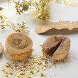 Stock Photo: Fig and christmas decoration
