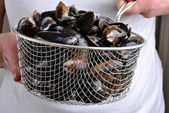 Fresh organic mussel — Stock Photo